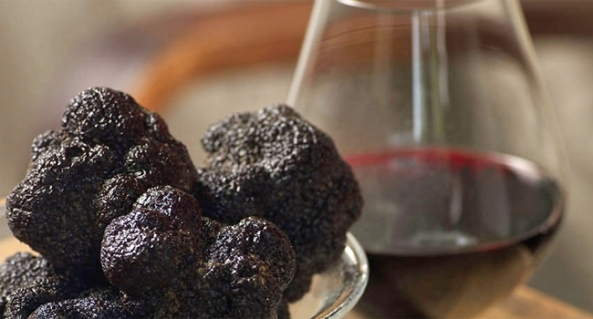 wine and truffles provence