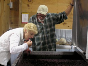 Tasting the grapes - cherries and chocolate