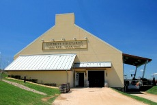 Luckett vineyard