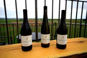Planters Ridge wine and view2.JPG